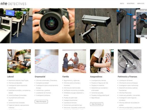 Web de Cionte Detectives