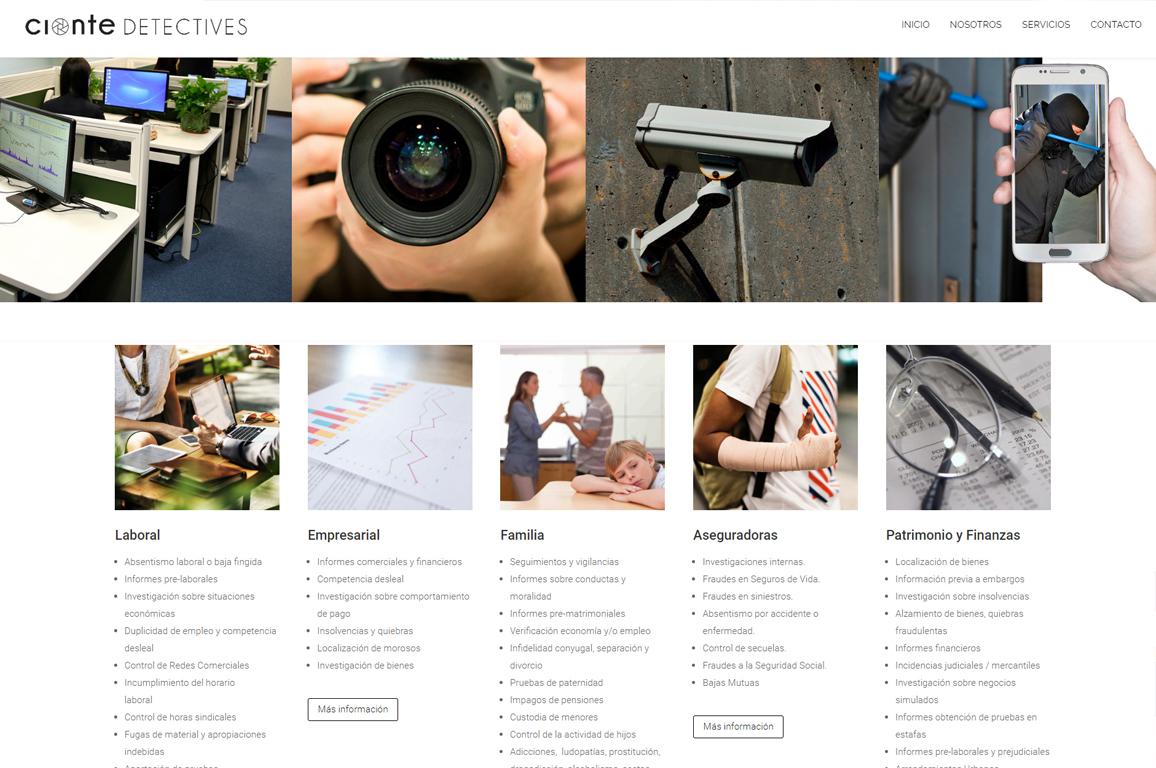 001 Diseño Web Logroño Desarrollo Web detectives pamplona