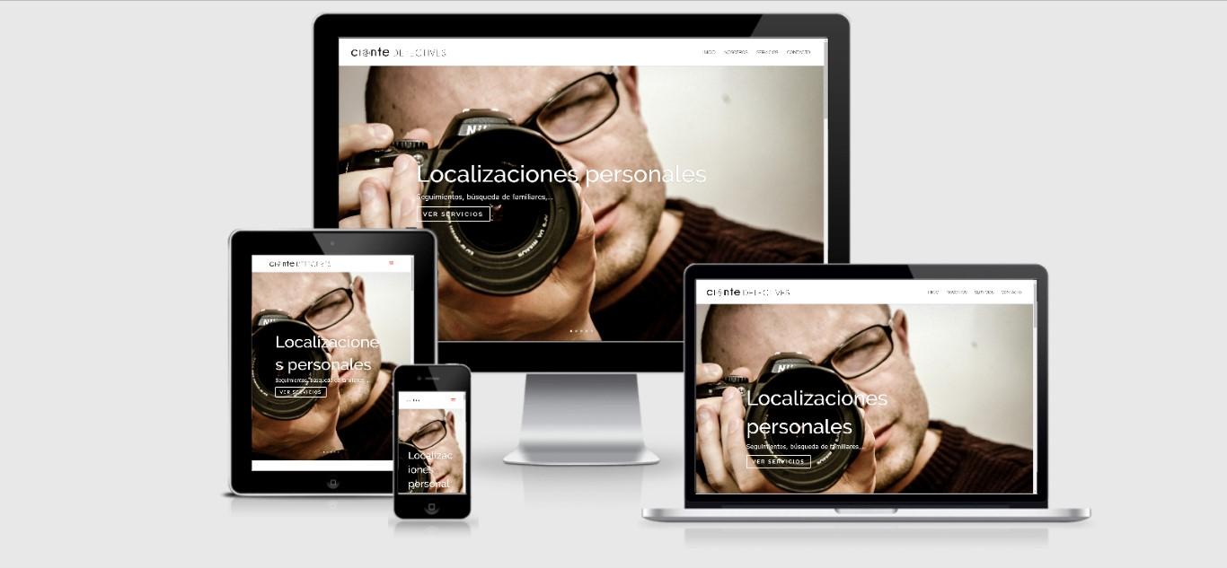003 Diseño Web Logroño Diseño Web Agencia Detectives