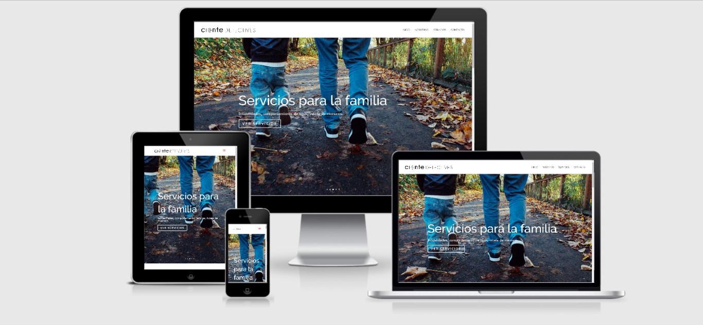 002 Diseño Web Logroño Desarrollo Web detectives pamplona