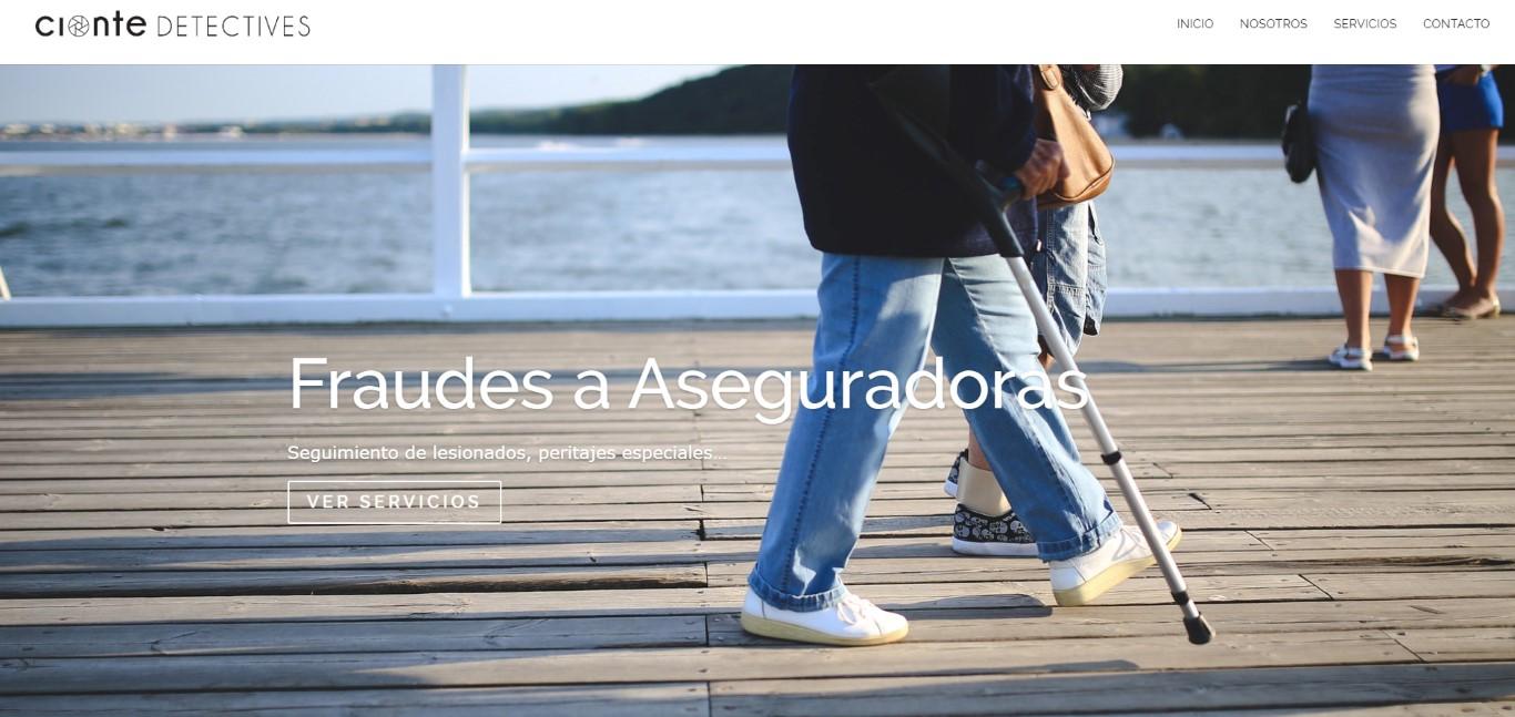 006 Diseño Web Logroño Desarrollo Web detectives pamplona